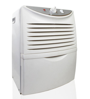 Charleston Dehumidifiers